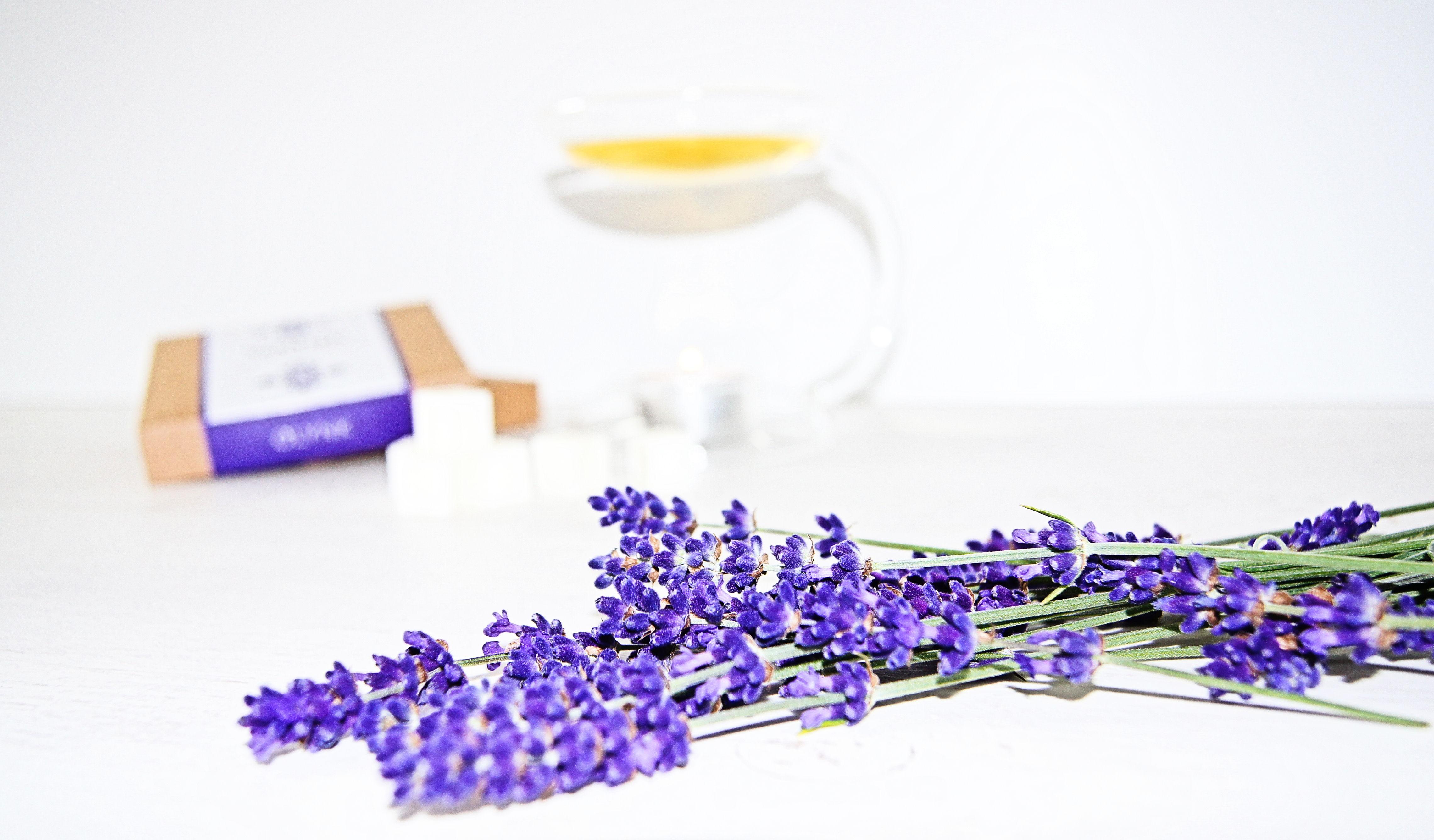 zapachy z kominkiem do aromaterapii